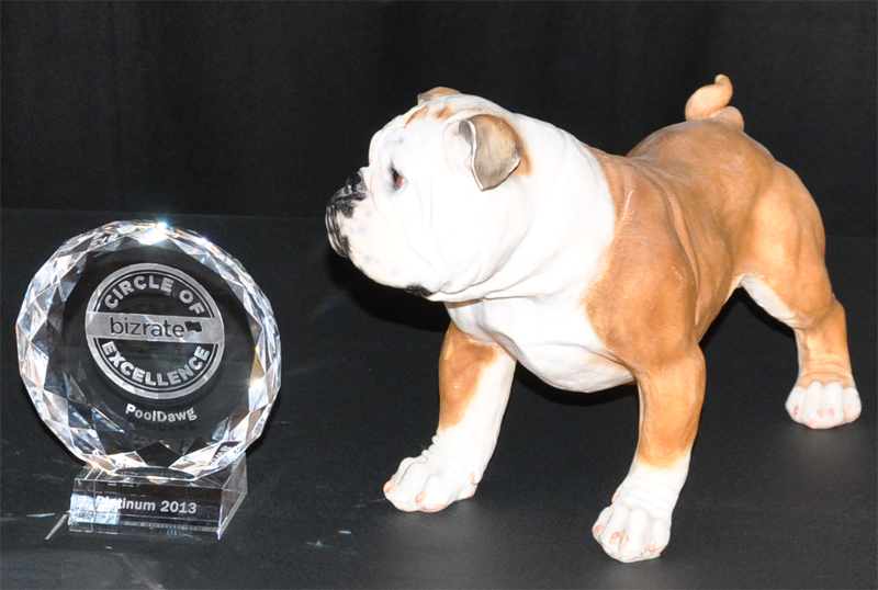 PoolDawg Awarded Bizrate 2013 Circle of Excellence Award